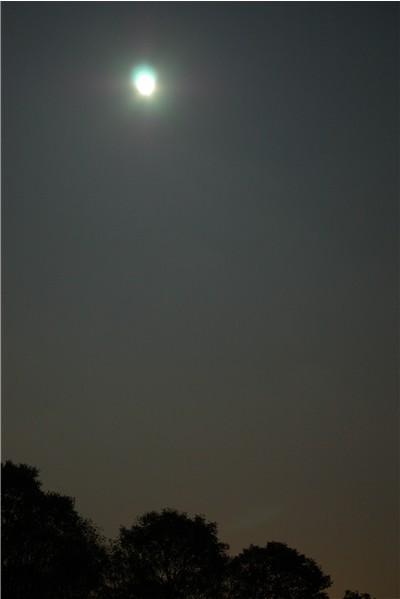 14th_moon
