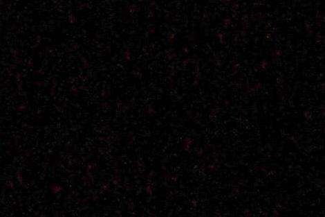 Dark_k10d_iso8005enfmag