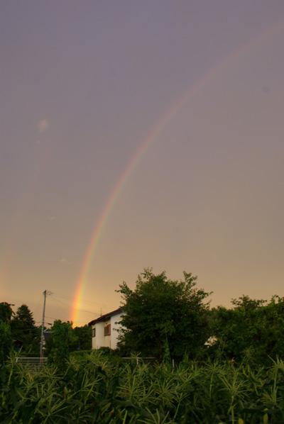 Rainbow08727