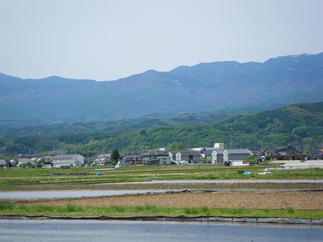 Yabashiraenkei