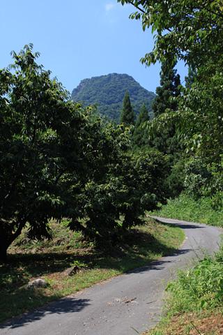 Komayumi1