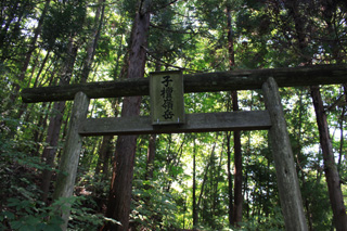 Komayumi3