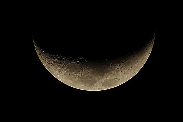 Moonwlt