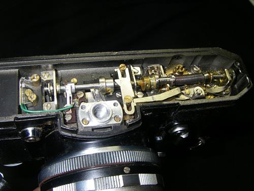V6bottom