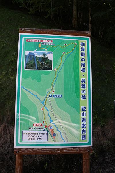 Osutaka_dou4