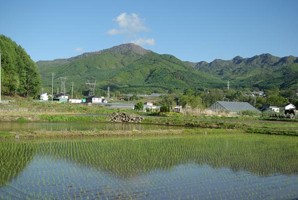 Moraiyama