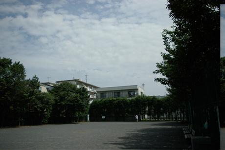 Musashino3921